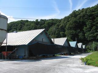 川村大王農場