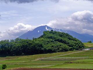 遠藤第一農場
