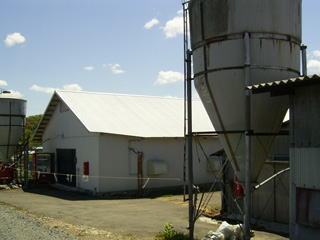 渡第一農場