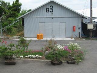 上村真樹農場